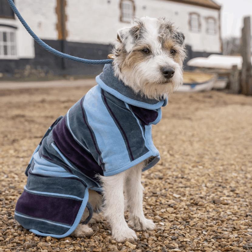 win dog drying coat