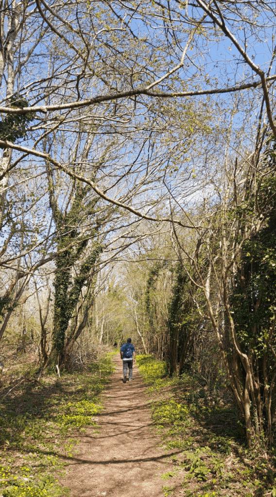 Tarrant Valley Circular Walk