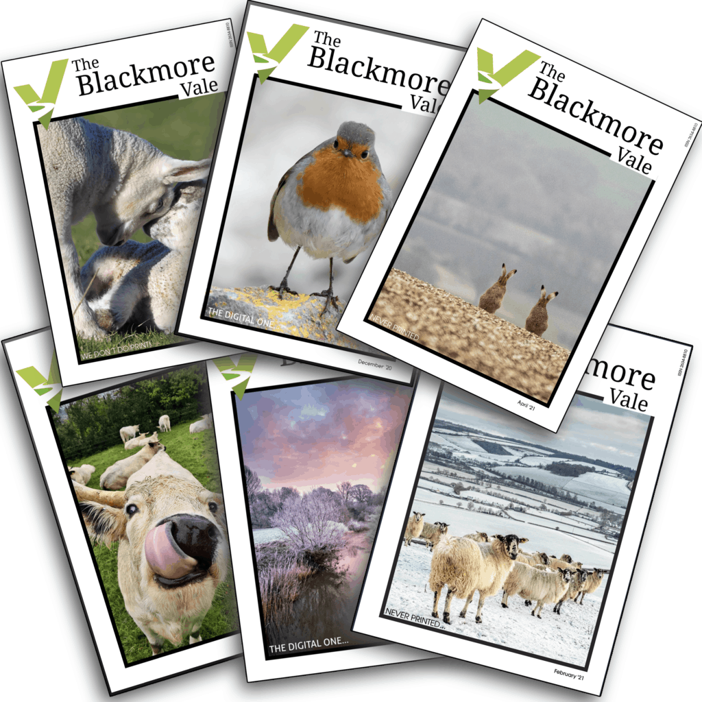 back issues of the digital blackmore vale